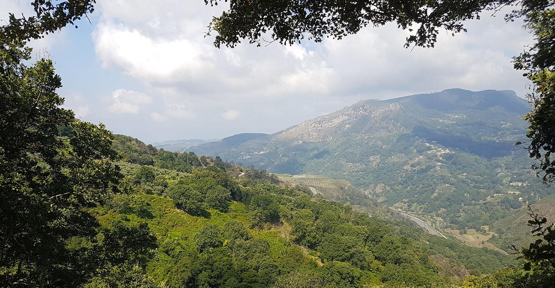 'amore per la terra e la natura, la voglia di ridare valore al territorio di Santa Croce