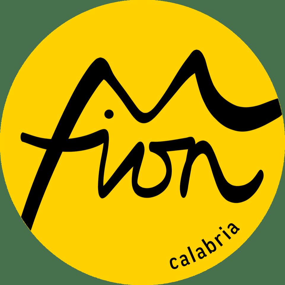fion_logo